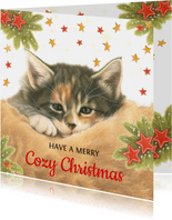 Kattenkerstkaart Have a Cozy Christmas