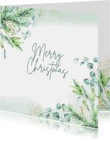 Kerst eucalyptusblad