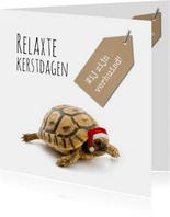 Kerst verhuiskaart grappig met schildpad