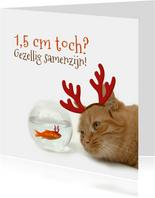 Kerstkaart goudvis en kat