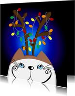 Kerstkaart kat in de nacht