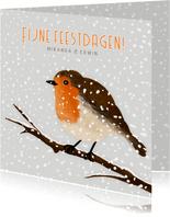 Kerstkaart met illustratie van roodborstje in de sneeuw