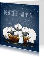 Kerstkaart schapen bij de kribbe - De bèèèèèste wensen!