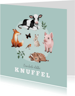 Kinderkaart dieren dikke knuffel boerderijdieren