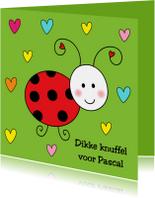Kinderkaart Lieveheersbeestje groen