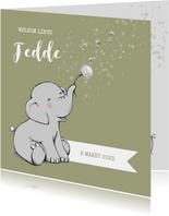 Lief geboortekaartje met olifantje en sterren jongen