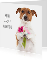 Liefde - Be my valentine - Boris