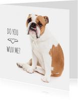Liefde - Do you wuv me - Bulldog hond