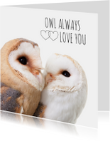 Liefde - Owl always love you uiltjes