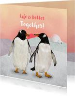 Liefdeskoppel Pinguins