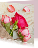 Moederdag kaart met drie delicate roze rozen