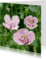 Mooie bloemenkaart met roze klaprozen