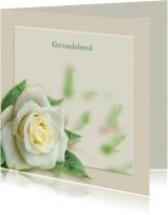 Mooie rouwkaart met een witte roos op gewassen ondergrond