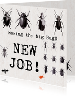Nieuwe baan - MAKING THE BIG BUGS!