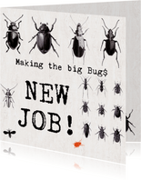 Nieuwe baan - MAKING THE BIG BUGS!