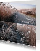 Nieuwjaar vredig winterse natuur