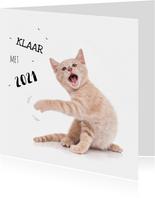 Nieuwjaarskaart kat kitten klaar met 2021
