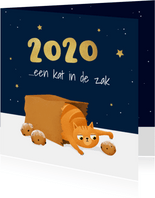 Nieuwjaarskaart kat poes sterren oliebollen illustratie 2021