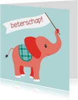 Beterschapskaarten - olifant beterschap