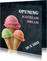 Opening ijswinkel - DH