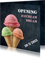 Opening ijswinkel
