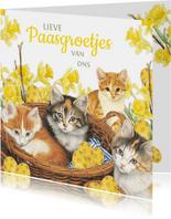 Paaskaart Kittens in het eiermandje
