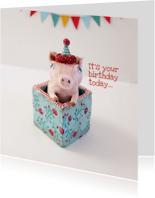 Verjaardagskaarten - Party Animal Birthday