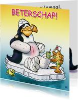 Pinguins beterschap in verband