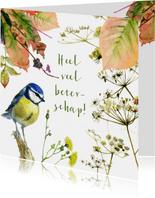 Pimpelmeesje herfst beterschap