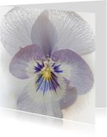 Plastic viooltje