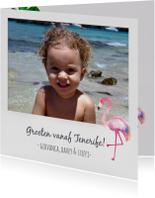 Polaroid vakantiekaart foto flamingo
