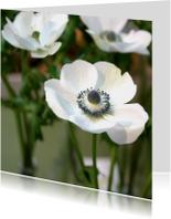 Rouwkaart bloem anemoon
