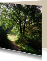 rouwkaart bospad in zon bedankt