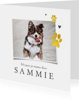 Rouwkaart hond goud pootjes foto hartjes