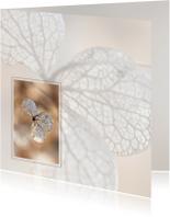 Rouwkaart hortensia