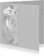 rouwkaart klaproos grijs