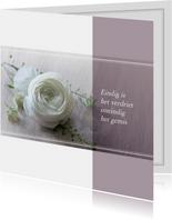 Rouwkaart witte roos klassiek