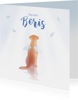 Rouwkaarten hond engel huisdier