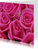Roze rozen Anet Fotografie