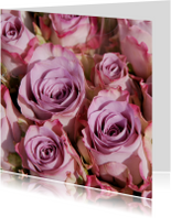 Roze rozen fotokaart