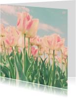 roze tulpen in't veld