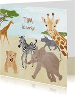 Safari dieren verjaardagskaart