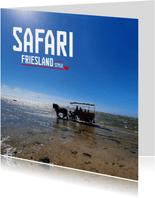 Safari Friesland Style 2