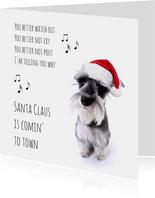 Santa claus dog-isf