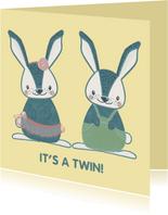 Schattige felicitatiekaart geboorte tweeling meisje & jongen