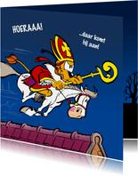 Sinterklaas Loeki op het dak - A