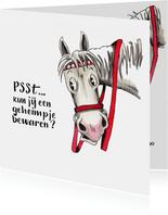 Sinterklaaskaarten Amerigo verteld een geheimpje