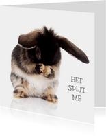 Sorry kaart konijntje