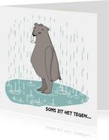 Sterkte - Beer in de regen