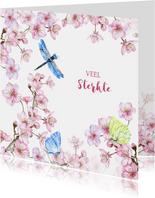 Sterkte bloesem vlinders